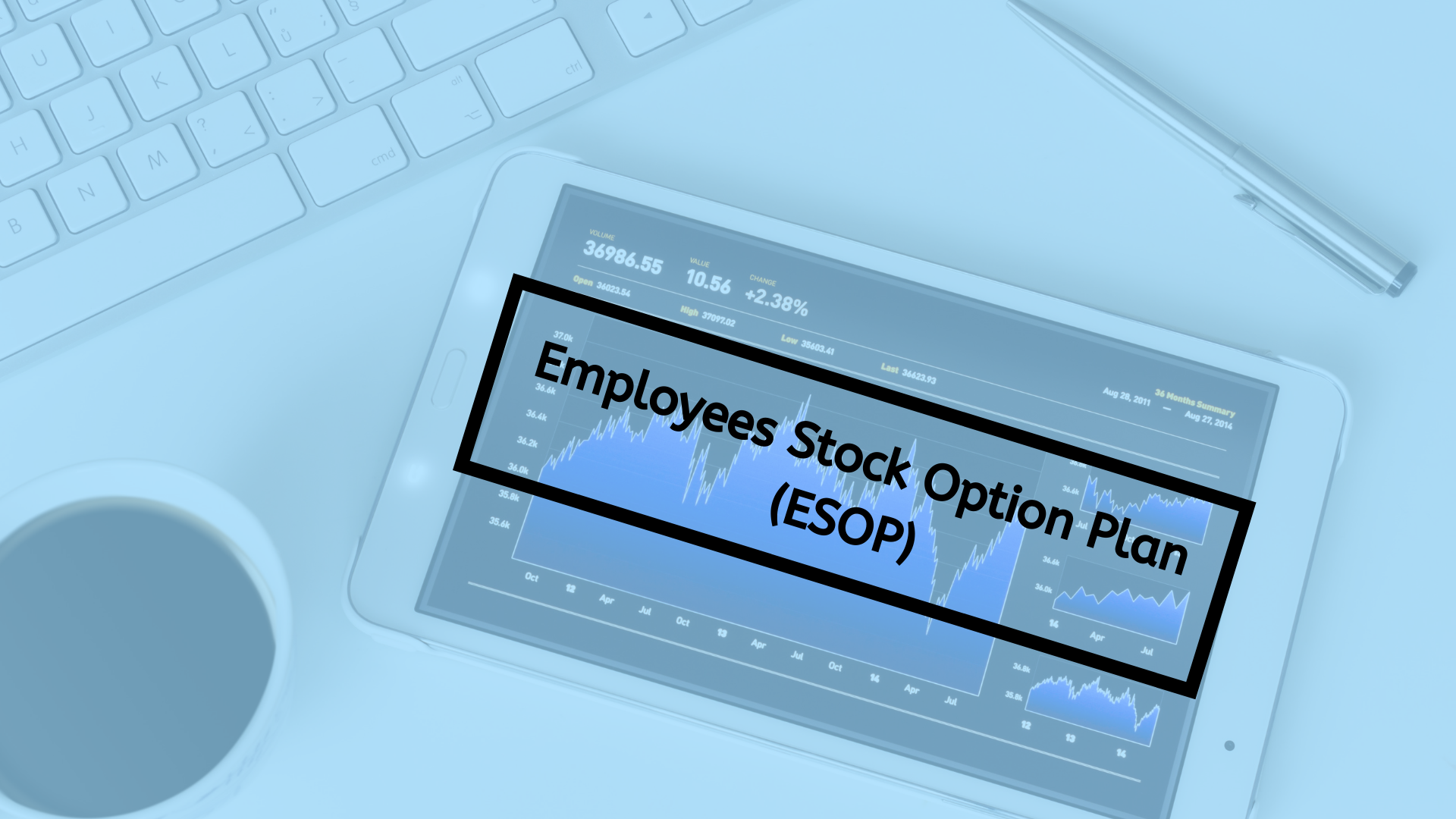 Employees Stock Option Plan (ESOP)