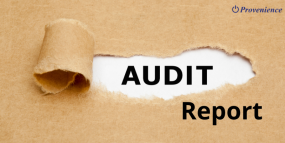 Duties of an Auditor of a Company